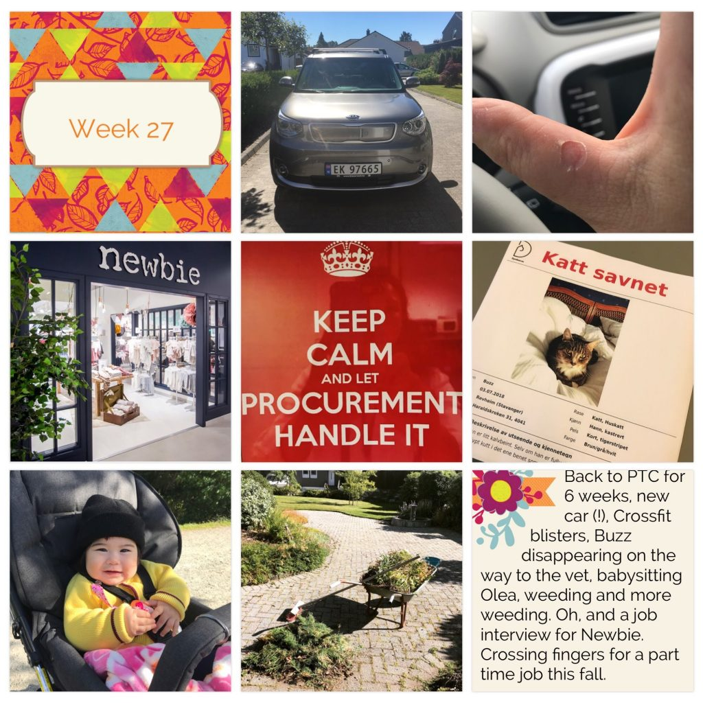 Project Life weekly collage week 27