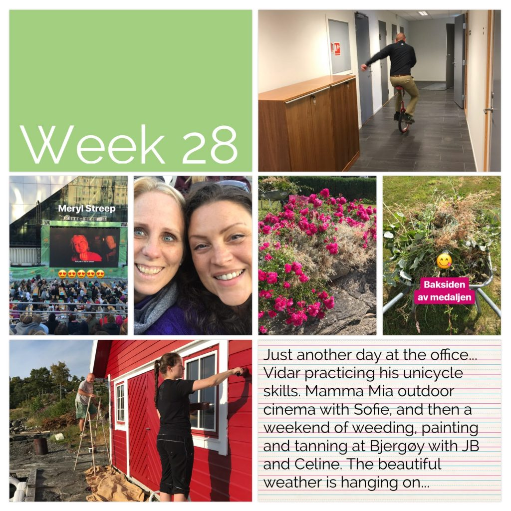 Weekly picture collage week 28