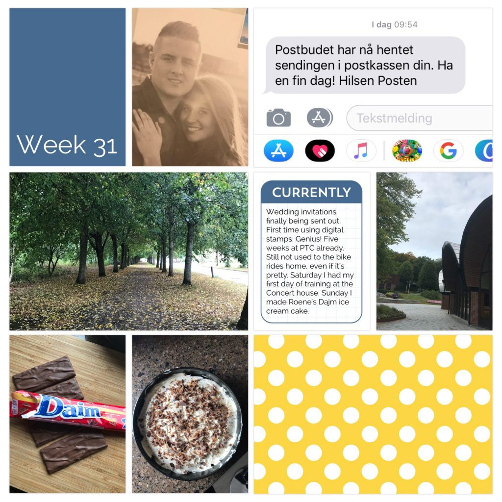 Weekly picture collage week 31