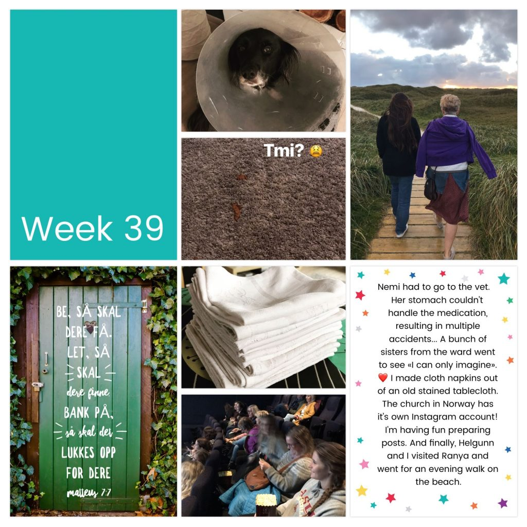 Weekly photo collage week 39