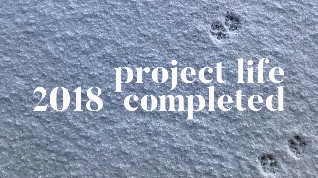 Project Life 2018, 4th quarter